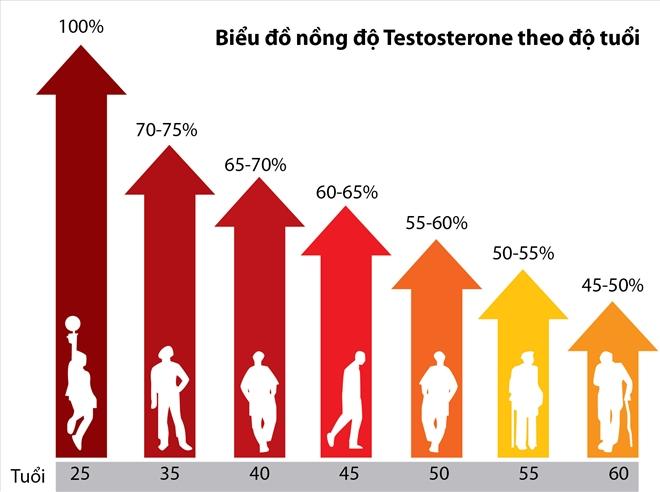 Biểu đồ nồng độ testosterone ở nam giới theo độ tuổi.